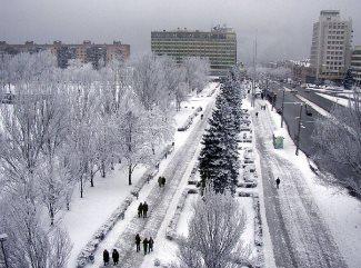 зима і сніг в запоріжжі